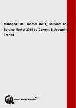 managed file transfer mft software and service