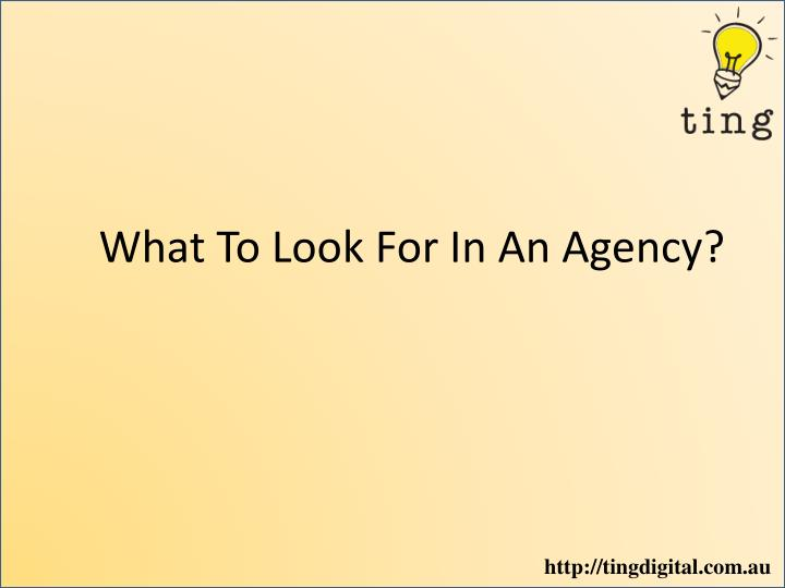 what to look for in an agency n.