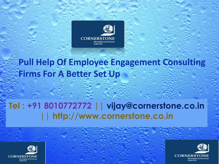 pull help of employee engagement consulting firms n.