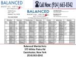 balanced martial arts 375 white plains 1