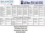 balanced martial arts 375 white plains