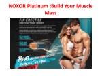 noxor platinum build your muscle mass