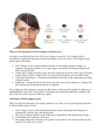 what are the ingredients in xyz collagen cream