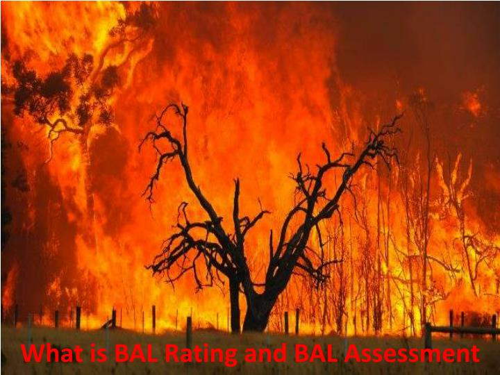 what is bal rating and bal assessment n.
