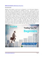rudra investment pvt ltd business plan part i