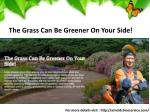 the grass can be greener on your side