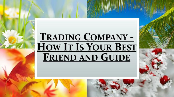 trading company how it is your best friend and guide n.