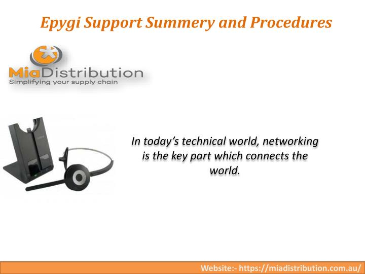 epygi support summery and procedures n.