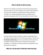 what is windows web hosting