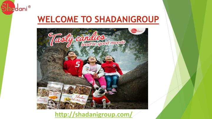 welcome to shadanigroup n.