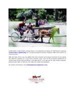 central park central park carriage tours