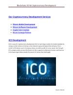blockchain ico cryptocurrency development 2
