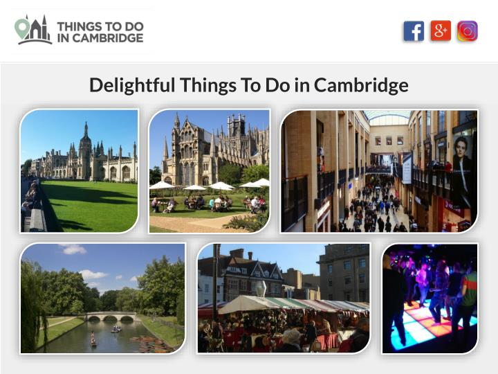delightful things to do in cambridge n.