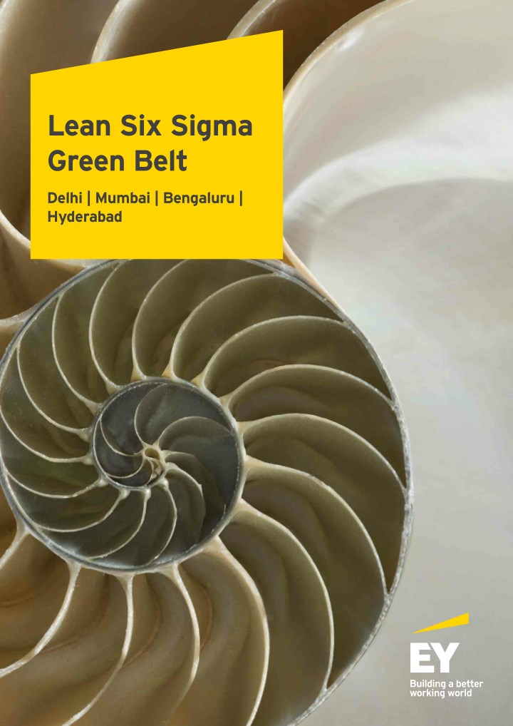lean six sigma green belt n.