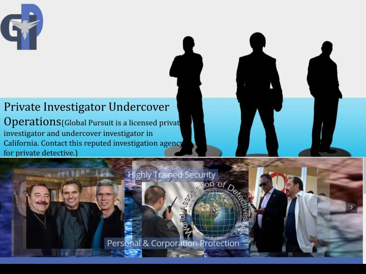 private investigator undercover operations global n.