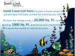 smith creek fish farm has been a family owned