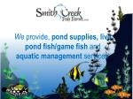 we provide pond supplies live pond fish game fish