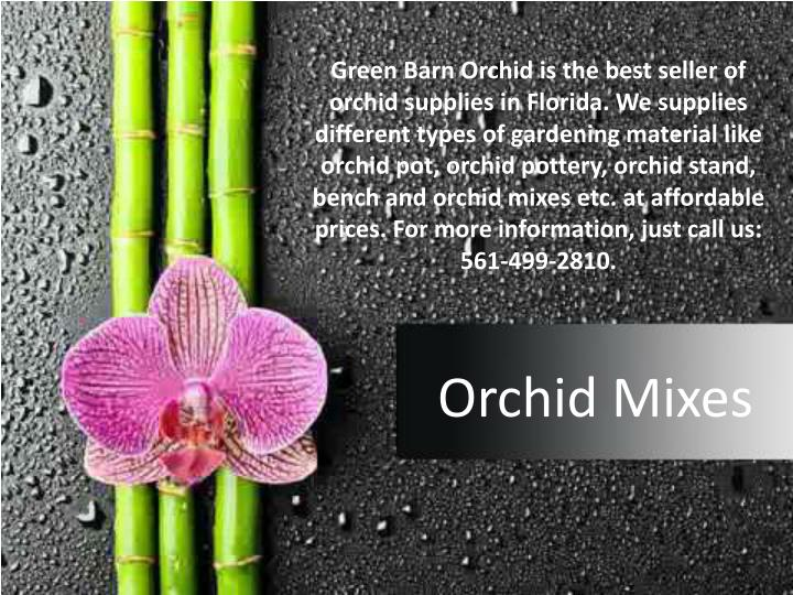 green barn orchid is the best seller of orchid n.