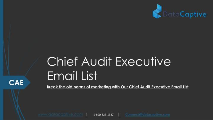 chief audit executive email list n.