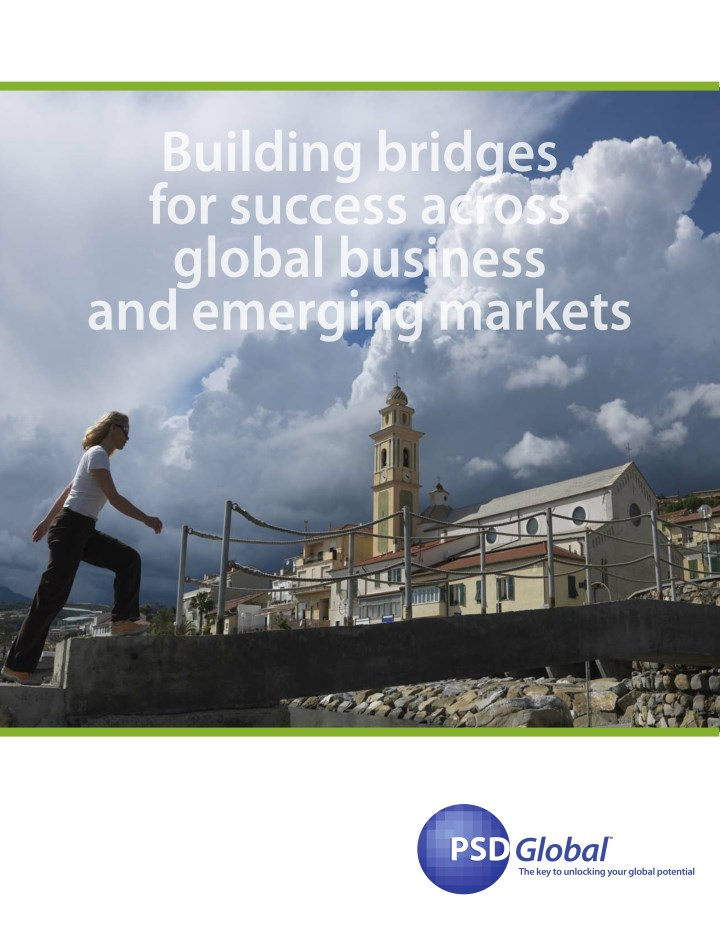 building bridges for success across global n.