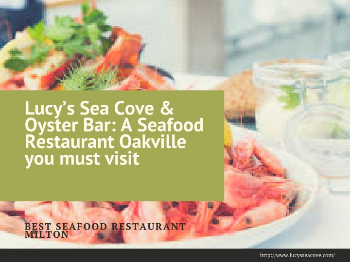 lucy s sea cove oyster bar a seafood restaurant n.