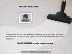 pet odor and stains 1