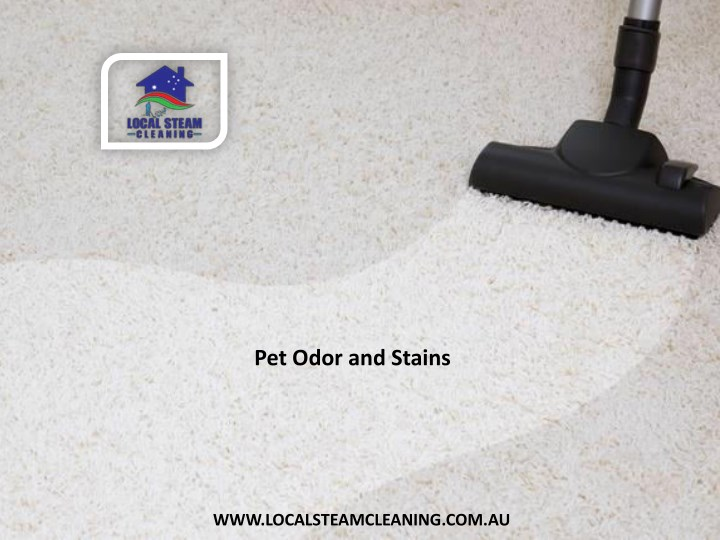 pet odor and stains n.