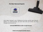 pet odor removal experts 1
