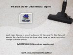 pet stain and pet odor removal experts 1
