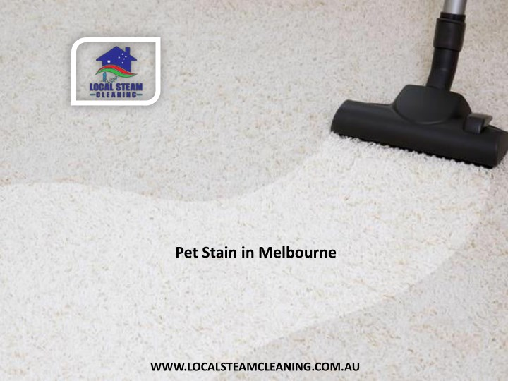pet stain in melbourne n.