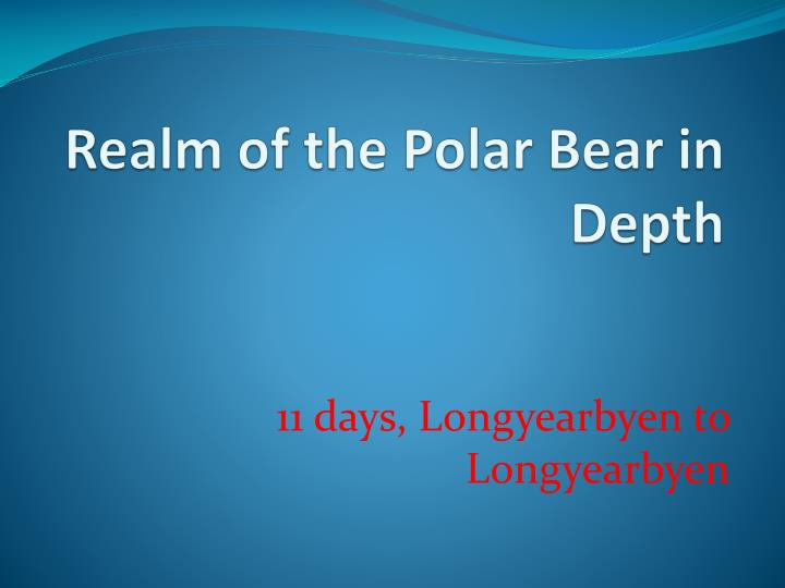 realm of the polar bear in depth n.