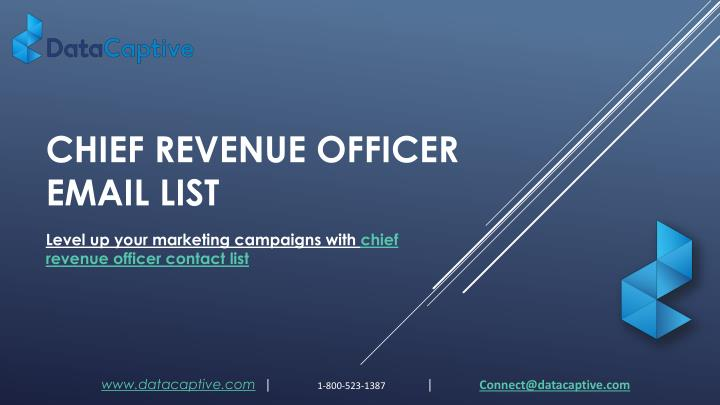 chief revenue officer email list n.