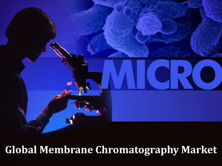 global membrane chromatography market n.
