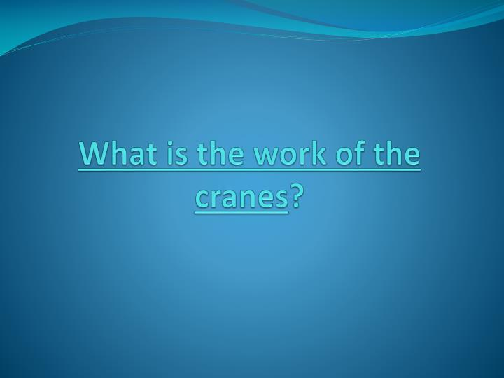 what is the work of the cranes n.