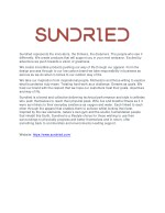 sundried represents the innovators the thinkers