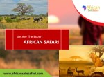 we are the expert african safari