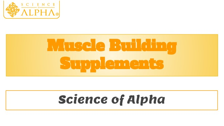 muscle building muscle building supplements n.