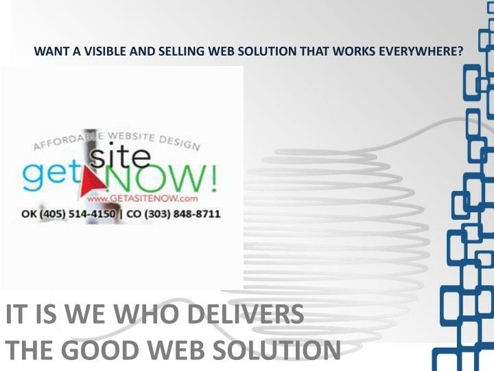 want a visible and selling web solution that n.