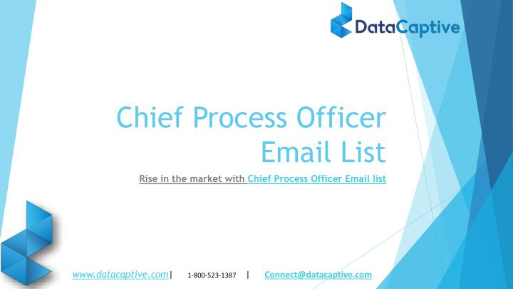 chief process officer email list n.