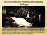 choose affordable wedding photography packages