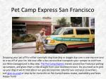 pet camp express san francisco
