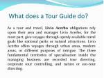 what does a tour guide do
