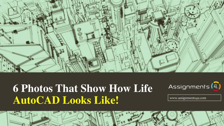 6 photos that show how life autocad looks like n.