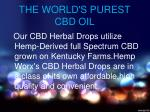 the world s purest cbd oil