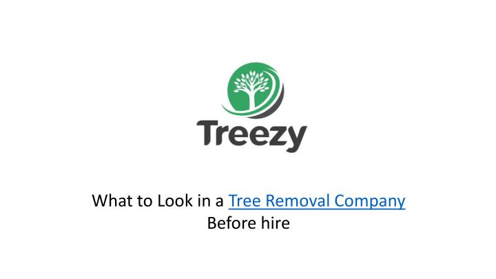 what to look in a tree removal company before hire n.