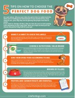 tips on how to choose the perfect dog food