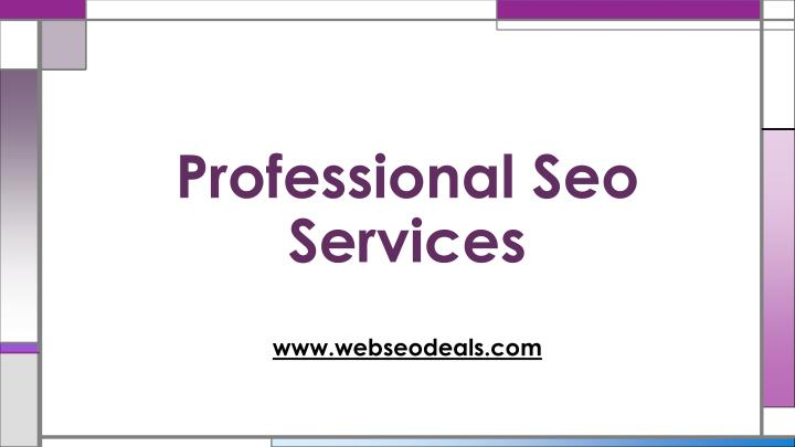 professional seo services n.