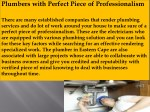 plumbers with perfect piece of professionalism