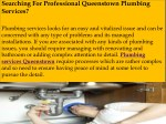searching for professional queenstown plumbing