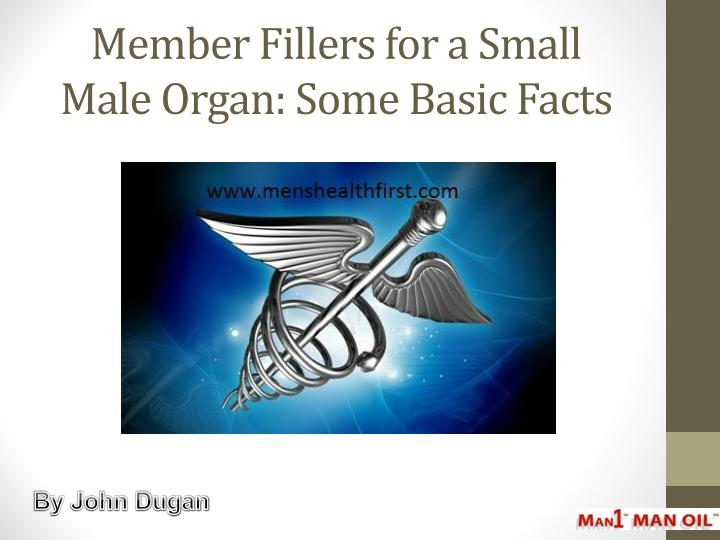 member fillers for a small male organ some basic facts n.